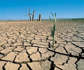 20101207124542-cambio-climatico.jpg