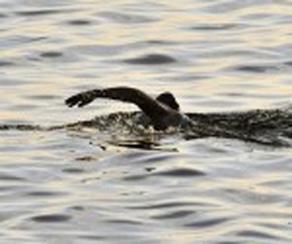 20120701195534-nadadora.jpg