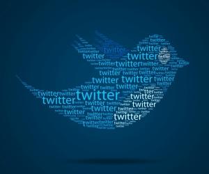 20121211134937-twitter.jpg