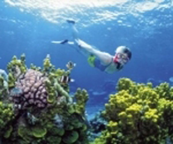 20120816130801-oceano.jpg
